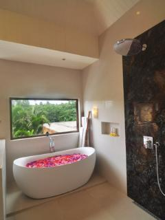Designer Bath Tub & Oversized Rain Shower