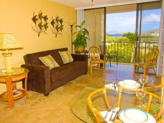 WOW! $145 Rate  @ Sapphire -In Unit Free WiFi, St. Thomas