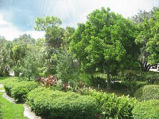 Wild Pines - Bonita Bay A-205