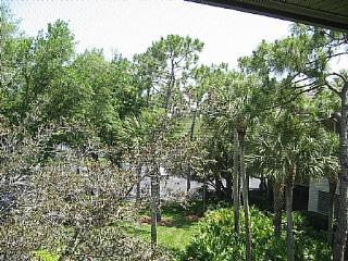 Wild Pines - Bonita Bay B-302