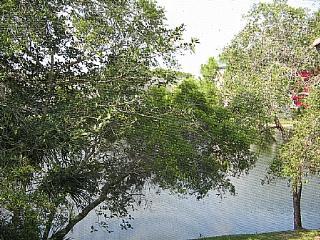 Wild Pines - Bonita Bay E-203