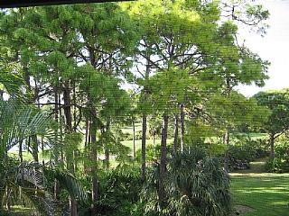 Wild Pines - Bonita Bay C-305