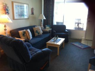 Living Room/Kitchen Area (208)