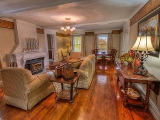 Osprey Manor on Cayuga Lake Wine Trail w Lake Access and Hot Tub Sleeps -20