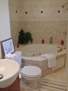 Spa Tub for 2!  Relax & enjoy...