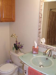Bathroom #2:  Decolav Sink & Cross-cut Marble Shower