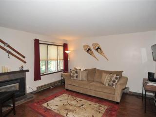 Convenient In Town 2 Bedroom Condo - Asgard Haus 201, Breckenridge