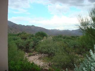 1st Floor 2 Bedrm with Picture Perfect Mountain Views and Flair of Tucson!