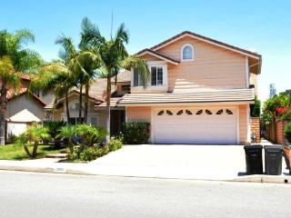 Nice house with 4 bedroom and private pool,  Disne, Walnut