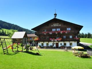 LLAG Luxury Vacation Apartment in Hopfgarten im Brixental - 538 sqft, comfortable, beautiful, quiet…, Niederau