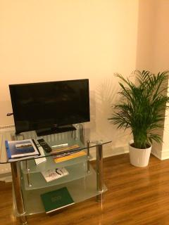 Living Room TV and plant :-)
