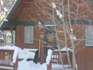 Family Mountain Cabin In The Woods, Breckenridge