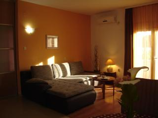 Comfortable and sunny living room with pull-out double bed and with exit to terrace
