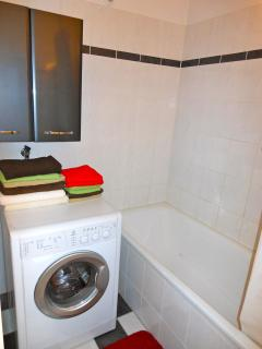 Bathroom with bath tub, washing machine with dryer function