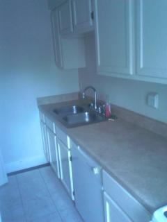 Sink and Kitchen Storage Space