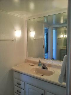 Bathroom has 2 parts: vanity with sink, and separate bath/shower with WC.