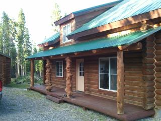 Beautiful Wyoming Family Cabin in Union Pass!