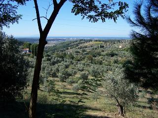PET e capretto amichevole vacanze Toscana, Riparbella