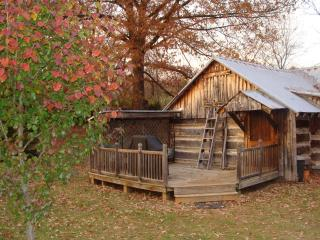 Homesteader's back deck in the fall