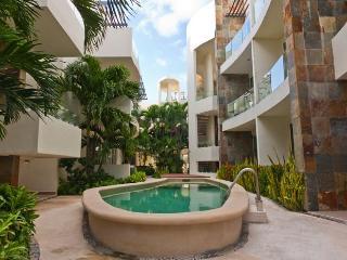 Mamitas Village Condominium Pool