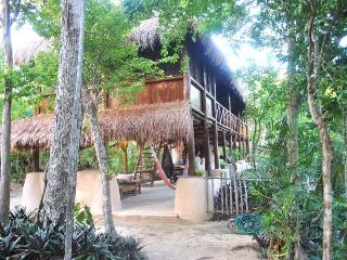Akumal Jungle Cabin with Private Cenotes