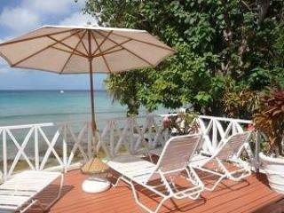 CASSANDRA II Beach APARTMENT, Speightstown