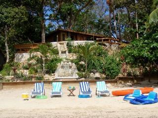 Ocean, Pool & Beach Front TURTLE BEACH, 2 bdrm/2 bth Gorgeous Mayan Villa