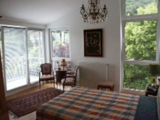 LLAG Luxury Vacation Apartment in Hofheim - 689 sqft, high-class, quiet, central (# 4280), Hofheim am Taunus