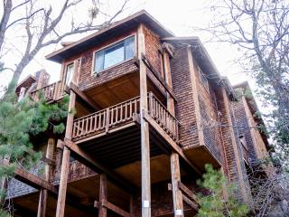 Gorgeous Mountain Escape, 18+ New Beds!, Lake Arrowhead