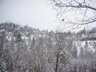 Winter wonderland!(March 2013)