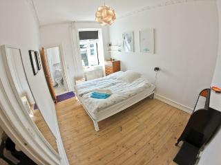Fine Noerrebro style apartment in cozy district, Copenhague