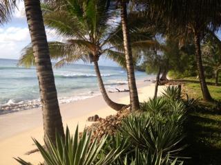 Kinondo Beach Paradise