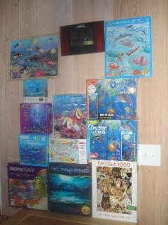 Puzzles. Evening or rainy day activity. Marine oriented. Adult+children mixtures. 100's of books too