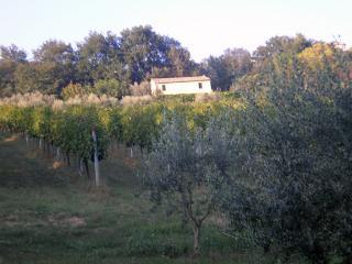 oasi tra mare e monti, Massignano