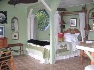 Beth's Hawaiian Hideaway Plumeria Suite Kona Side