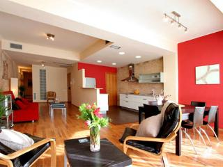 Great and Spacious Apartment 3 br in the center of Barcelona