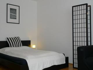 Apartment Boltzmanngasse, Viena