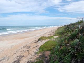 Mako Beach Surf House - with garage & pool, Ormond Beach