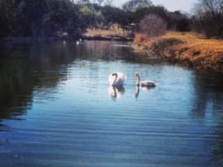 San Julian Creek est à 5 minutes à pied de la maison. Et relâchant pêche autorisé. Beaucoup de basses !