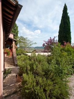 Villa Rosa - Il rosmarino in un caldo giorno d'estate