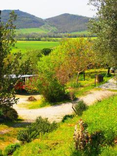 Villa Rosa - Montemelino