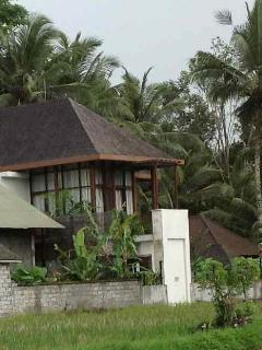 Villa from rice fields