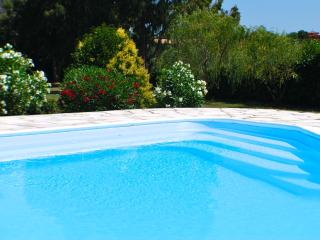 Large lakefront villa near Rome, Private Pool (salt, no chlorine) stunning views