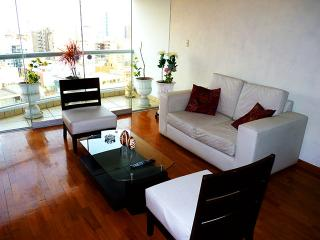 Apartment Malecon Balta in front of the Terrazas Club ( tennis club ) Ocean View, five blocks from Parque del Amor., Lima