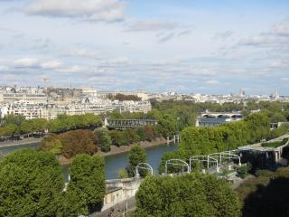 Spectacular view of seine river and Eiffel tower f, París