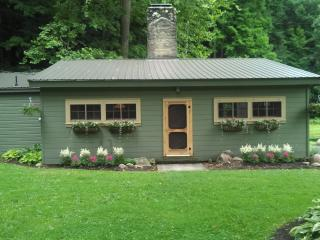 Hidden Valley Cabin 60 Acres/Pond/Creek/Waterfalls