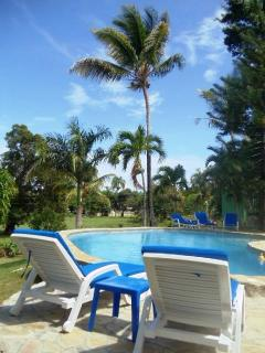 Pool surrounded by Palm Trees, Sun Chairs and Tables