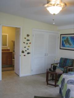 Entry to spacious and remodeled bathroom with a step down shower