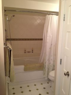 Full bath and shower, heated tile floors (washer/dryer in closet)