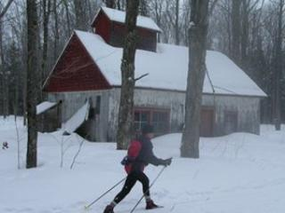 cross country skiing _ 5 km from house